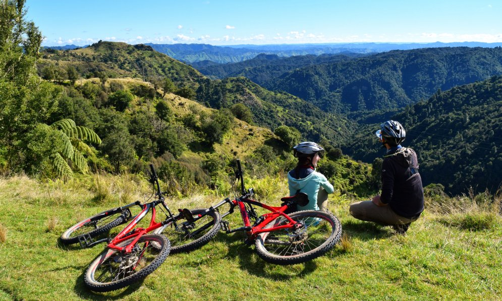Fishers Track is suited for intermediate riders. Photo Credit: Backpackerguide.nz
